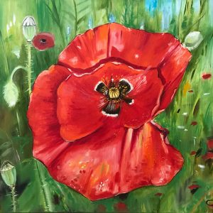 Poppies by Lana Bumane